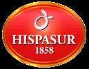 Hispasur